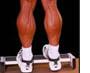 Как накачать икроножные мышцы.